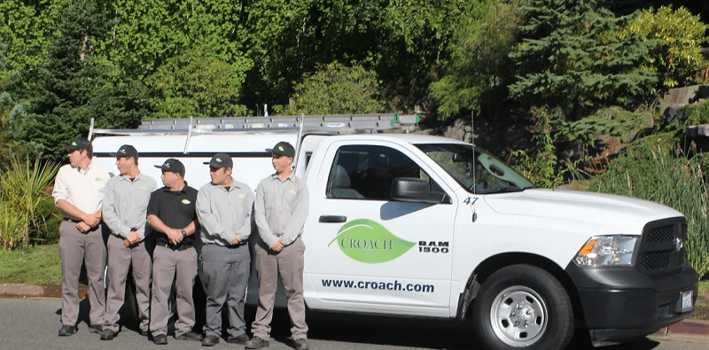 Croach Pest Control Contractors - Seattle, Washington