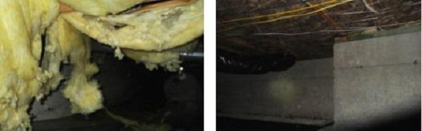 Crawl Space Insulation - Seattle, WA - Croach