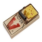 Victor Wood Based Mouse Trap - Croach Pest Control