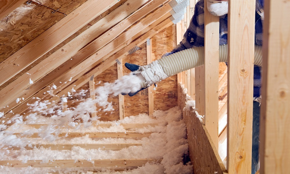 Kirkland Attic Insulation Integrated with Pest Control - Croach
